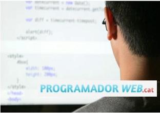 Botigues.cat: Programador web